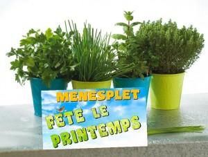 troc aux plantes 24700 menesplet