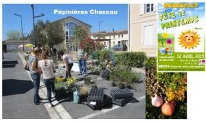 6-pepinierechazeau1