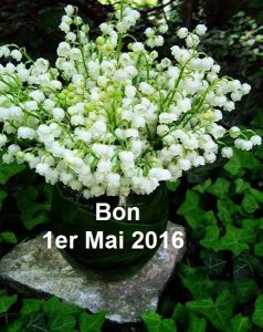 bouquet_muguet